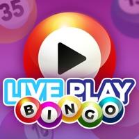 Live Play Bingo Hack Credits and Hints Generator online