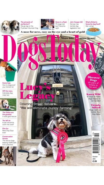 Dogs Today Magazine screenshot-3
