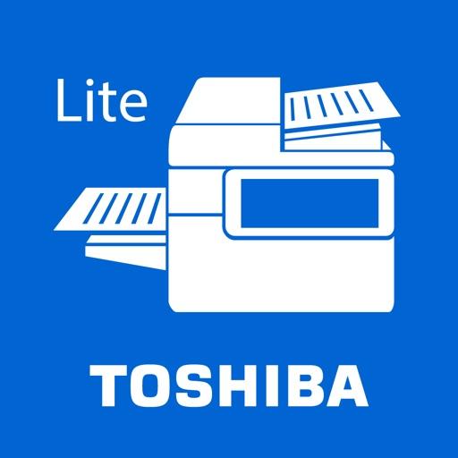 e-BRIDGE Print & Capture Lite