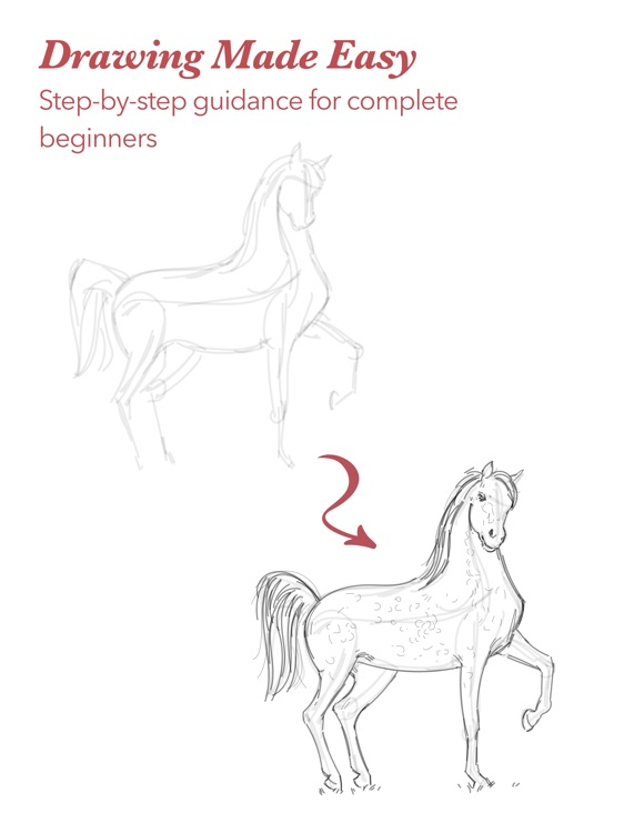 ShadowDraw: Learn How to Draw