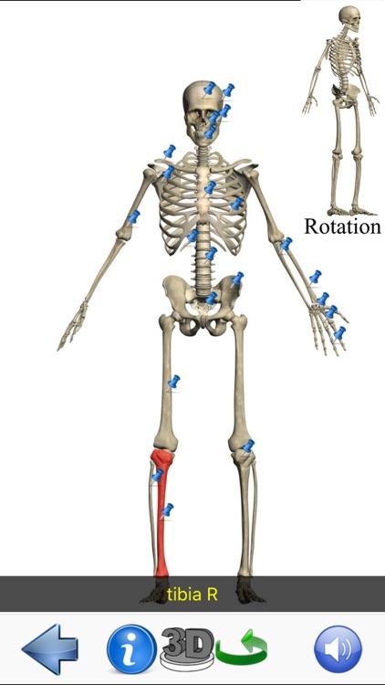 Visual Anatomy Lite screenshot-5
