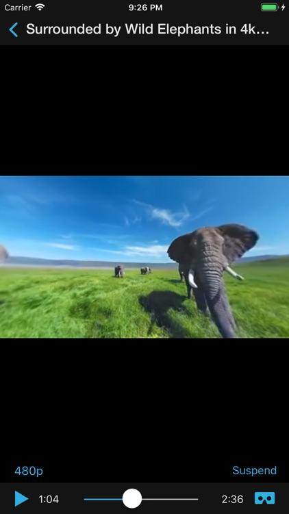 VR Movies : 2D 3D 360° Video