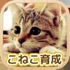 かわいい こねこ育成げーむ - iPhoneアプリ