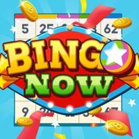 Bingo Now Hack Resources Generator online