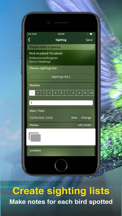 All Birds PR -> Antigua screenshot-8