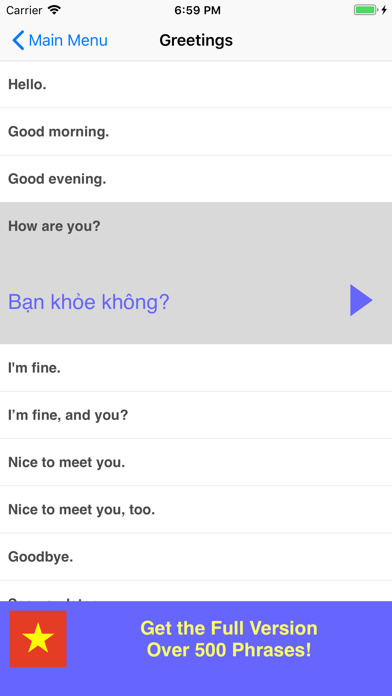 Speak Vietnamese Phrases Lite screenshot two