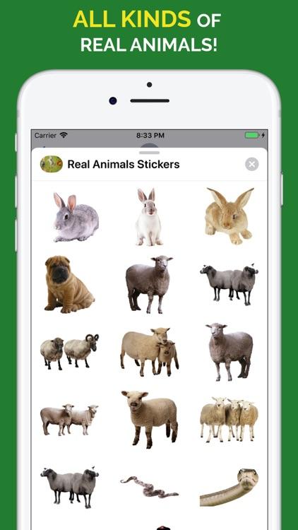 Real Animals Emoji Stickers screenshot-9