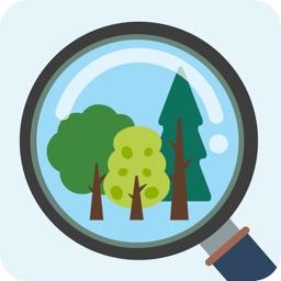 My Tree ID