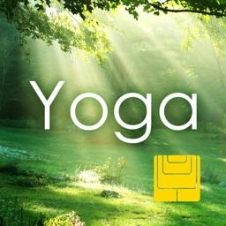 Sleepable Yoga:Easy Meditation