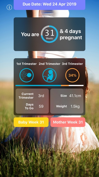 Pregnancy Today - Baby Tracker