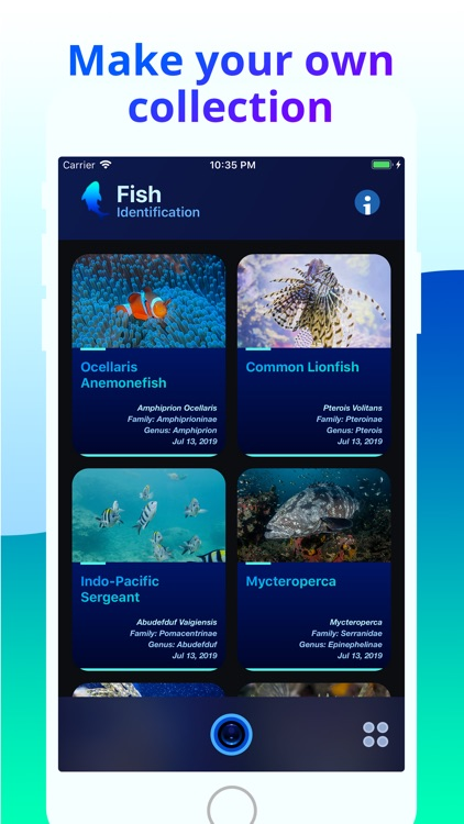 Fish Identifier