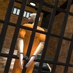 Prison Escape 2019