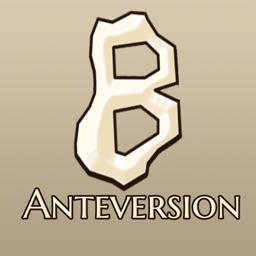Bonesetter Anteversion
