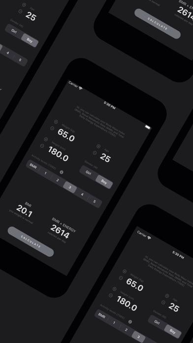 BMI, BMR, TDEE Calculator Screenshots