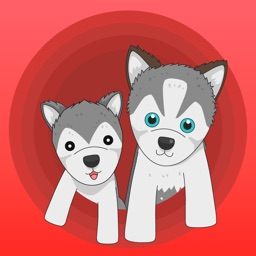 Rocky and Dog - Puzzle Games