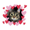 App Icon for My Favourite Kitties App in Mexico App Store