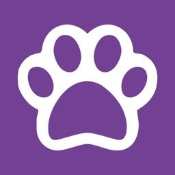 RVC Pet Epilepsy Tracker