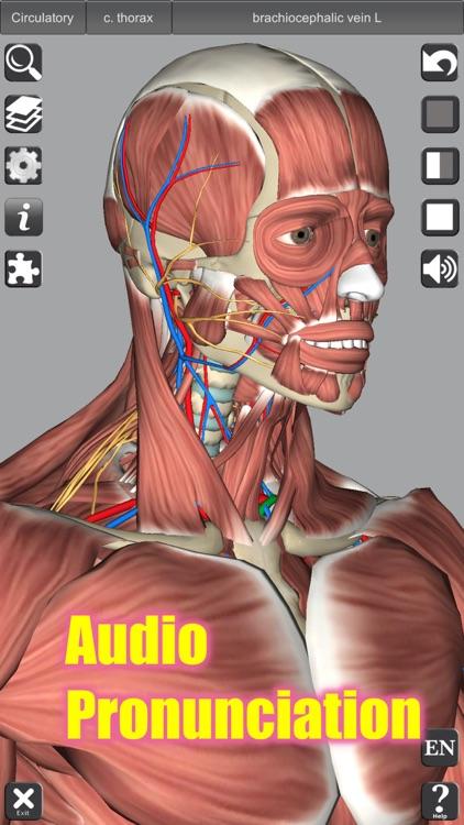 3D Anatomy screenshot-5