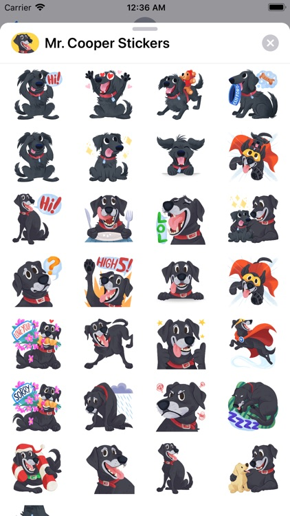 Mr. Cooper Black Dog Stickers screenshot-7