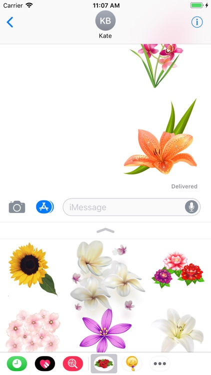 Flowers Collection Stickers