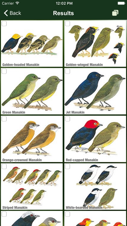 All Birds Ecuador field guide screenshot-6