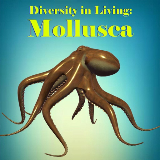 Diversity in Living: Mollusca