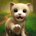 My Favorite Little Kitten Sim