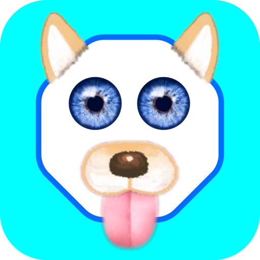 Funny Face - Photo Editor iOS App