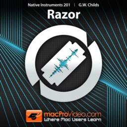 Working with Razor Course