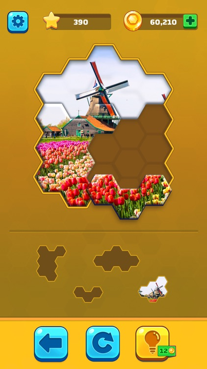 Hexa Jigsaw Puzzle ® screenshot-3