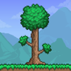 505 Games (US), Inc. - Terraria bild