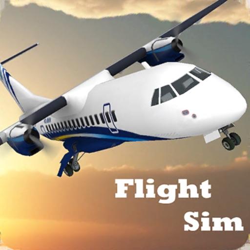 Flight Sim 2020