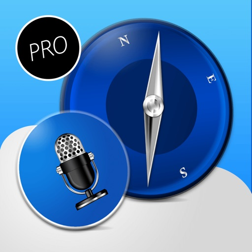 Voice Reader For Web Pro