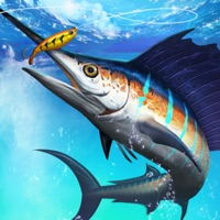 Codes for Fishing Championship Hack