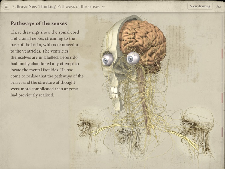 Leonardo da Vinci: Anatomy screenshot-3