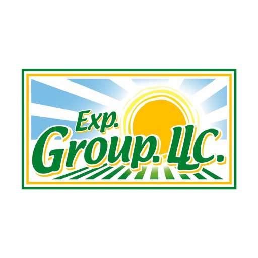 Exp. Group icon