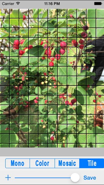 ImageChange screenshot-3