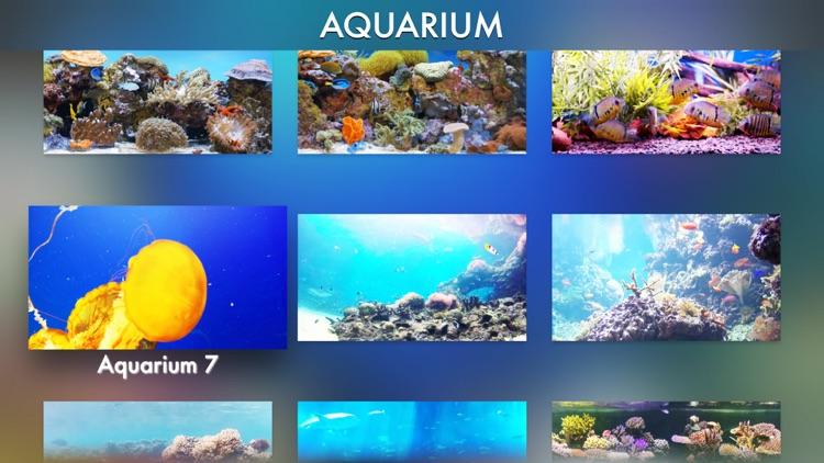 Aquariums Fireplaces AIR RELAX