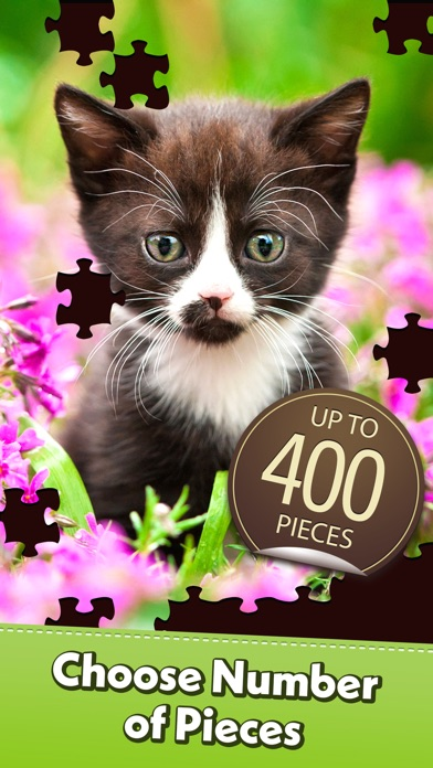 Jigsaw Puzzle for Pc