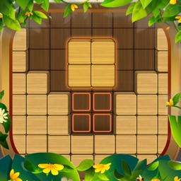 Wood Block Puzzle 2021 : Hexa!