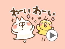cat and rabbit a