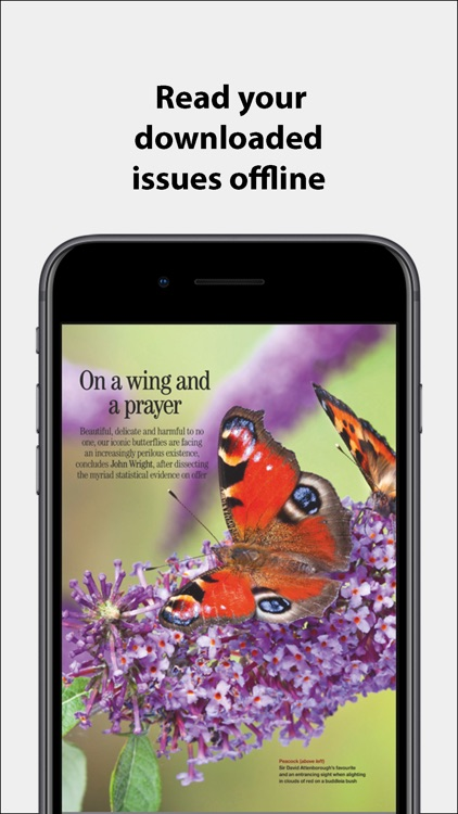 Country Life Magazine NA