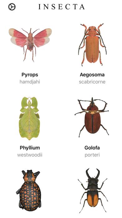 Insecta:のおすすめ画像1
