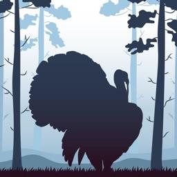 Wild Turkey Calls +