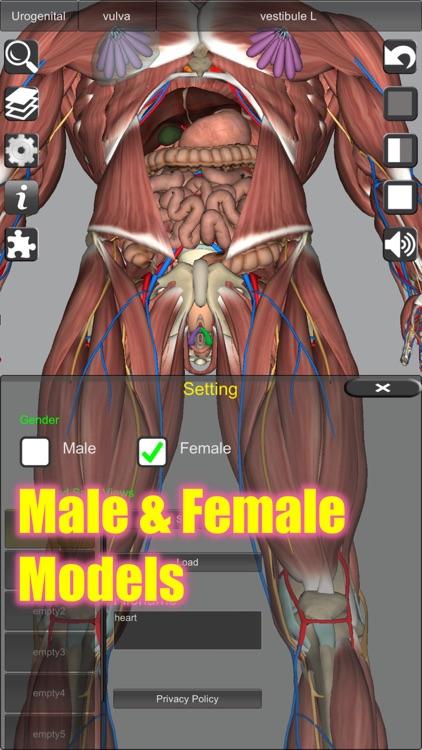 3D Anatomy screenshot-6