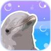 どこでも水族館 (アクアリウム) - 癒やしの育成ゲーム