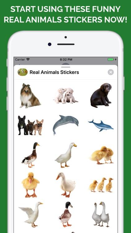 Real Animals Emoji Stickers screenshot-4