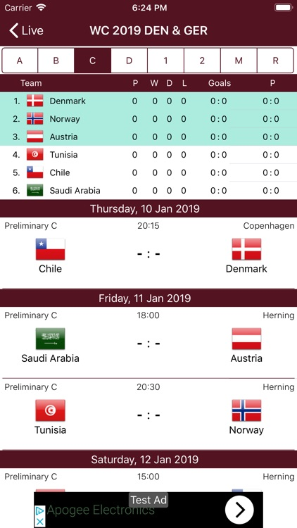Handball WC 2019 screenshot-1