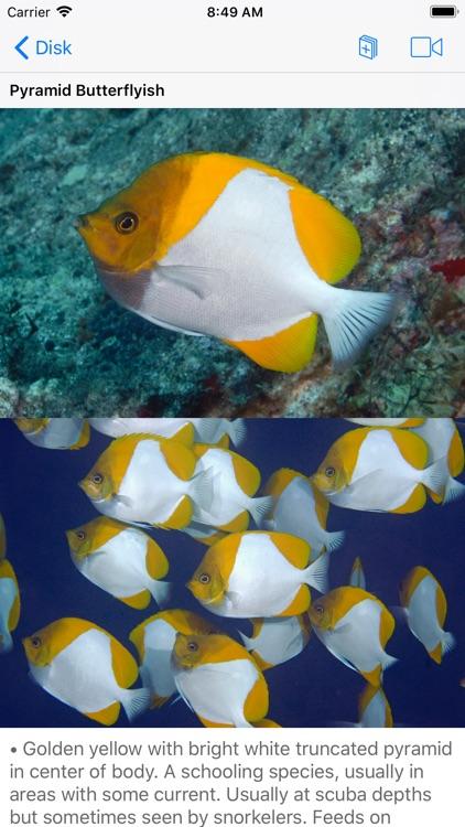 Scuba Fish Hawaii screenshot-4