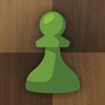 Schaken - Speel & Leer